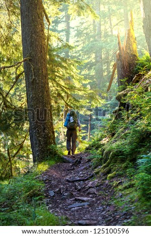 Boy backpacker in forest - stock photo