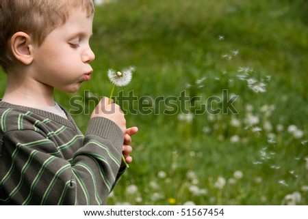 Boy blowing dandelion in summer day on green grass field - stock photo