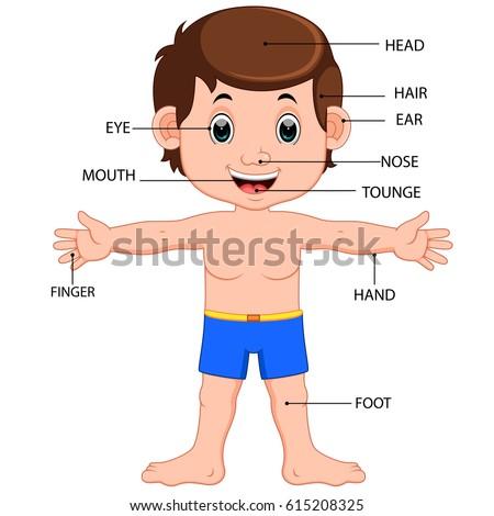 Boy body parts diagram poster stock illustration 615208325 boy body parts diagram poster ccuart Choice Image