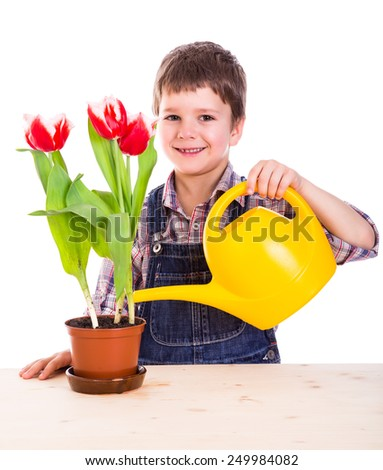 Boy care flowers in the pot, isolated on white - stock photo