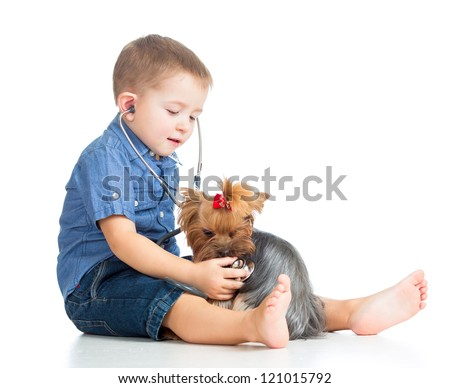 boy child examining dog puppy isolated on white background