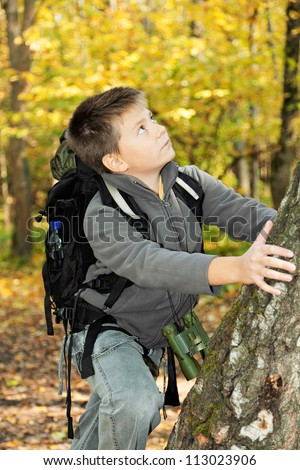 Boy climbing up on tree in autumn forest - stock photo