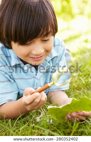 Boy examining leaf - stock photo