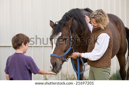 Boy Feeding Horse - stock photo