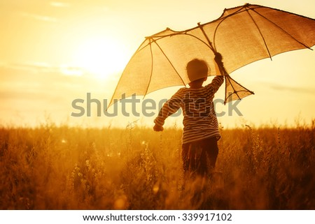 Boy flying a kite in a field at sunset - stock photo