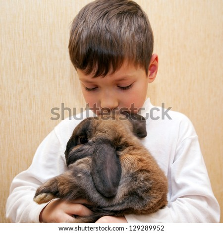 Boy hugging and kissing rabbit. - stock photo
