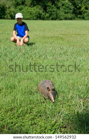 Boy hurt looking at a fleeing into the forest armadillo. Focus on the animal - stock photo