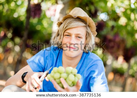 Boy in vineyard