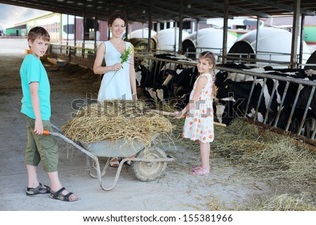 Boy keeps trolley with hay and girl loads hay by pitchfork and mother stands near their at cow farm. Focus on hay. - stock photo