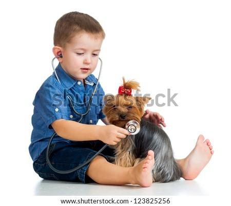 boy kid examining dog puppy isolated on white background - stock photo