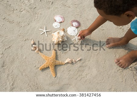 Boy making pattern with shells - stock photo