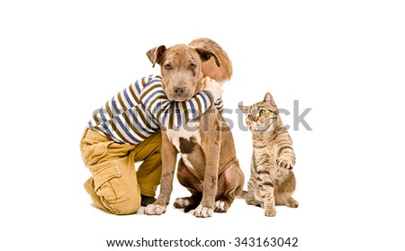 Boy, pit bull puppy and cat sitting together isolated on white background - stock photo