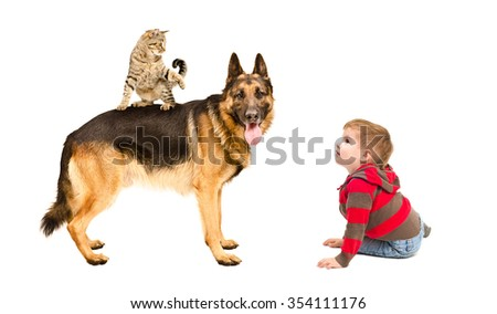 Boy playing with dog and cat, isolated on a white background - stock photo