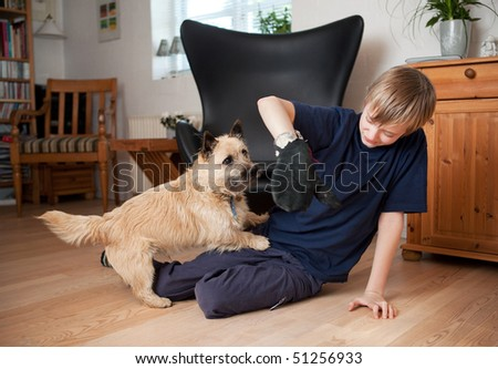 Boy playing with dog in living room