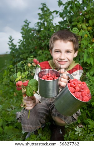 Boy showing freshly picked raspberries and red currants with raspberry plants in the background.