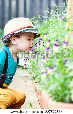 Boy smelling flower - stock photo