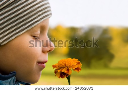 Boy smelling flower in autumn day. Focus on flower. - stock photo