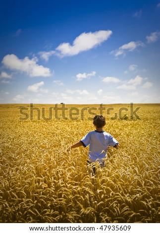 Boy Walking Through Golden Wheat Field On Summer Day - stock photo