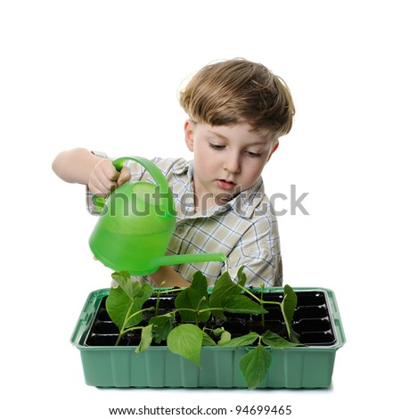 boy watering the plant with green can, isolated on white