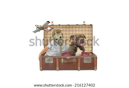 Boy wearing gas mask inside vintage suitcase with purebred dog pet and european union spain passport airborne airplane flying by isolated on white background