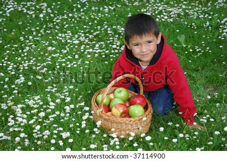 boy with apple in the grass