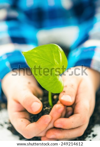 boy with green plant in open palms