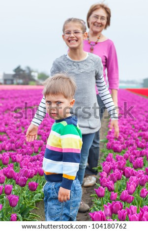 Boy with his sister and grandmother runs between of the purple tulips field - stock photo