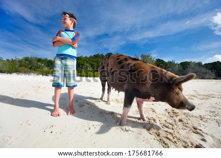 Boy with swimming pig of Exuma at beach - stock photo