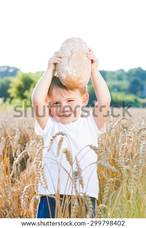 Boy with the bread over your head in the mature grain with the sun at your back for dream atmosphere - stock photo