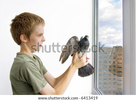 boy with the pigeon - stock photo