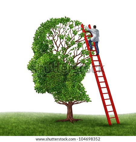 Brain and memory medical exam with a doctor on a red ladder climbing high to inspect a human head shaped tree as a symbol of dementia disease prevention and cure research on a white background. - stock photo