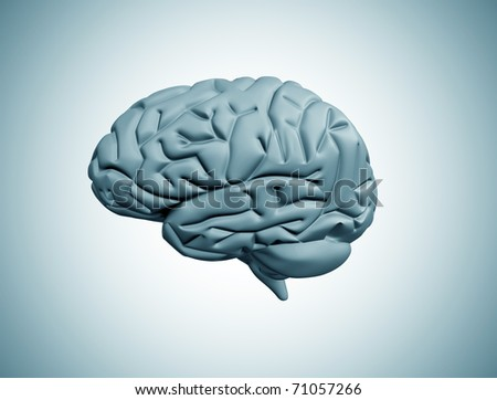 Brain illustration - stock photo