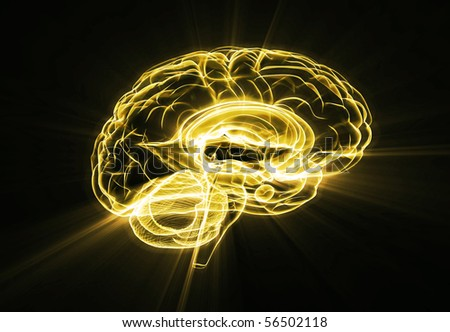 Brain illustration gold - stock photo