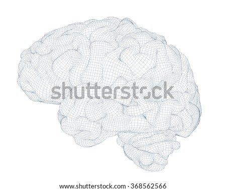 brain isolated wireframe 3d generated - stock photo
