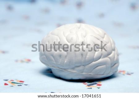 Brain Model - stock photo