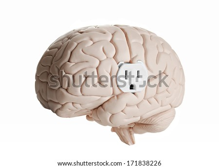 Brain model with an electrical outlet against a white background  - stock photo