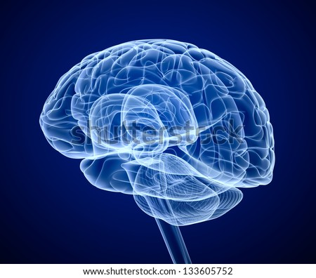 Brain scan, X-ray - stock photo