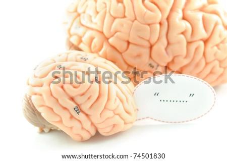 brain with wording - stock photo