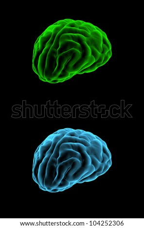 Brain x-ray - stock photo