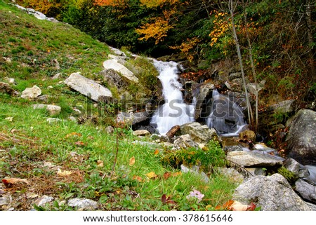 branch, creek, country scene with cascading water. - stock photo