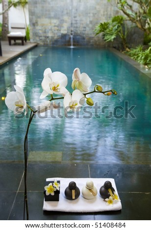 Branch of blooming orchid and jar with preparations for Spa - stock photo