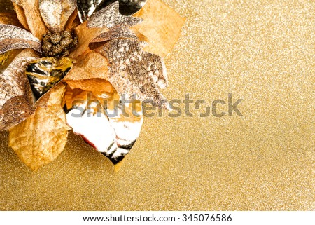 branch of Christmas tree with poinsettia - stock photo