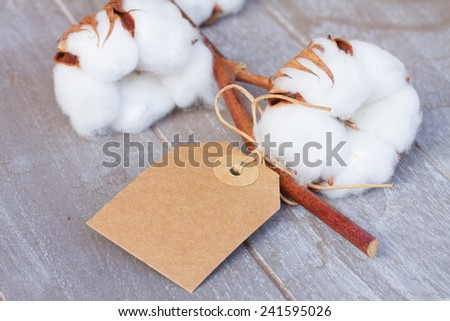Branch of cotton plant bud  with empty label on wooden background - stock photo