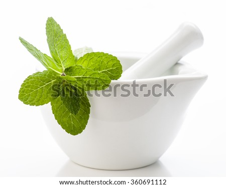 branch of fresh mint in white stone mortar - stock photo