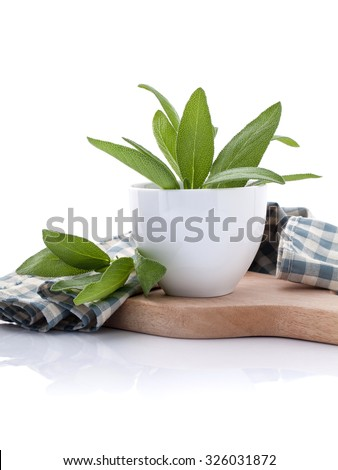 Branch of fresh sage or salvia in bowl on cutting board isolate on white background. - stock photo