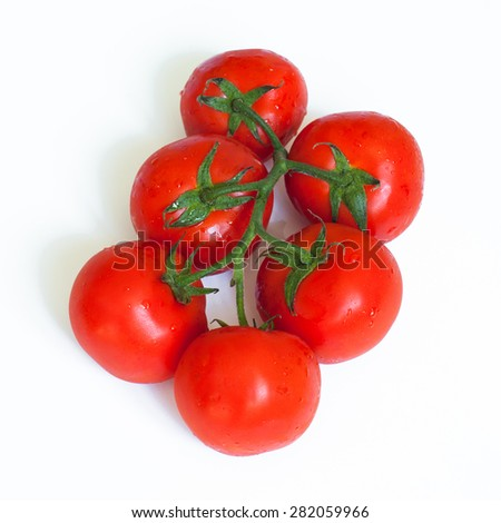 Branch of fresh tomatoes on white background. - stock photo