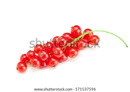 branch of  red currant isolated on white - stock photo