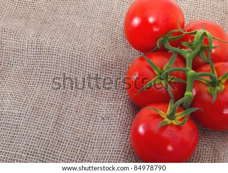 Branch of ripe fresh tomatoes on sacking background