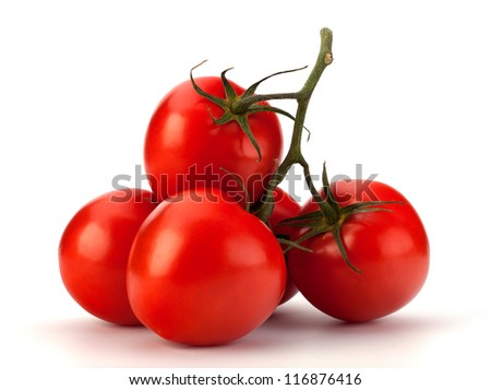 Branch of tomato isolated on white background - stock photo