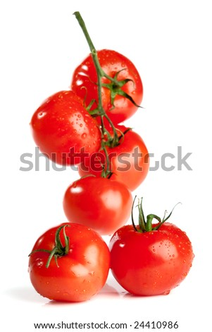 branch of tomato isolated over white background - stock photo